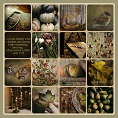 In Christ Alone, Autumn, Fall, Potpourri, Earthy, Collages, Vibrant Colors, Scrapbook, Mood Boards