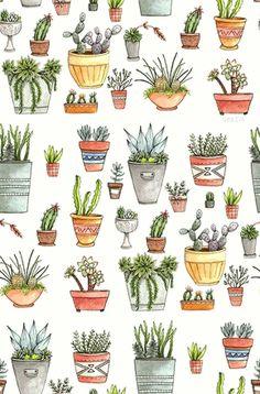 cactus tumblr - Pesquisa Google