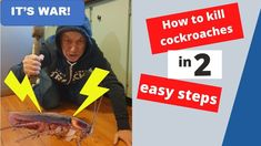 How to get rid of cockroaches in 2 easy steps. Effectively and cheaply get rid of cockroaches from your apartment. Investment Club, Investment Property, Management Company, Property Management, How To Kill Cockroaches, Rich Dad Poor Dad, Military Training, The Tenant, Wealth Creation
