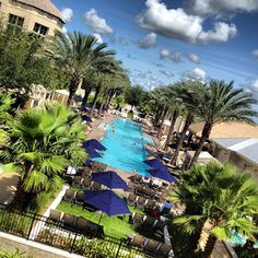 Picture perfect relaxation - Gaylord Palms Resort in Florida. Statigram – Instagram webviewer