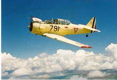 Mexican Air Force Colegio del Aire Escuela militar de Aviación Escuadrón Aéreo Avanzado North American AT-6