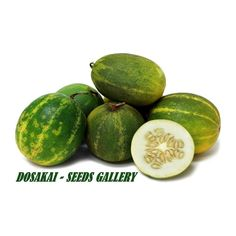 DOSAKAI Indian Cucumber Seeds  1,75€  DOSAKAI Indian Cucumber Seeds Price for Package of 5 seeds. Dosakai is a small, round yellow cucumber with green overlay and intermittent stripes creating the appearance of sections. As the cucumber matures, the skin becomes a darker yellow and the green patches become smaller. It has a pale yellow to white flesh with small, yellowish edible seeds. Dosakai has a tangy taste, unlike most members