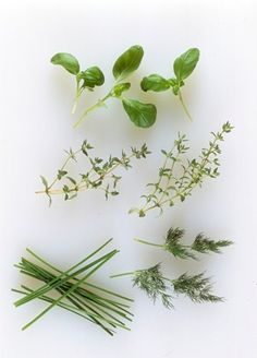 The health values of herbs