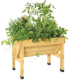 Compact VegTrug Patio Garden | Convenient Elevated Raised Bed