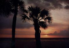 Sunset, Tampa bay, Florida