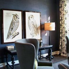 Southern Living Showcase House. Love the textured wallcovering and owl prints.