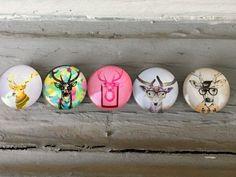 Funny Deer Glass Magnets (Set of 5)Locker, Fridge, Office,Kühlschrank, Цветы, magnete, aimant,magneet, magnético, imán, maighnéad,магнит