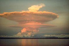 Lenticular mushroom clouds