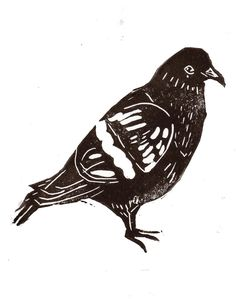 cutgluemakedo, illustration, emily martin, pigeon, bird, lino, print, simple