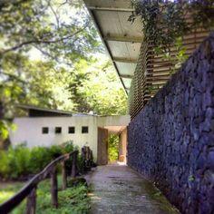 León de piedra, Tecoluca, San Vicente El Salvador. Por el Arquitecto salvadoreño Guillermo Altamirano. Arquitectura Bioclimática.