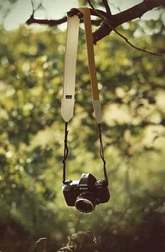 i can't live without my camera. I can find myself in my camera. keep snap beautiful view and enjoy you journey with you precious camera