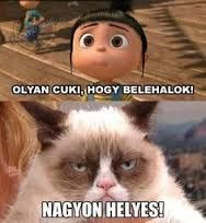 - Best funny memes humor disney grumpy cat Ideas The post Best funny memes humor disney grumpy cat Ideas appeared first on Cat Gig. Best funny memes humor disney grumpy cat Ideas - Grumpy Cat - Ideas of Grumpy Cat New Funny Pics, Cat Jokes, Funny Jokes To Tell, Funny Cat Memes, Funny Cats, Funny Pictures, Funny Humor, Hilarious Quotes, Funny Animals