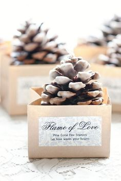 """Flame of Love"" pine cone fire starters for a winter wedding favor. #WinterWedding #WeddingFavors"