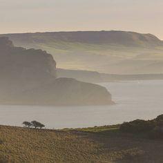Worbarrow Tout from Bindon Hill Dorset. #ukcoastwalkPhoto: Quintin Lake www.theperimeter.uk