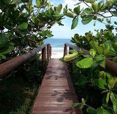 #beach #puente