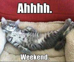 Hurá dnes je poslední den pracovního týdne, tedy pro nás určitě, takže Vám přejeme příjemné víkendové válení na našich matracích.