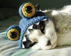 Luty Artes Crochet: Toucas e gorros