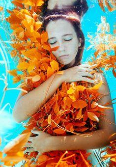 autumn  by Elena Kalis Underwater Photography