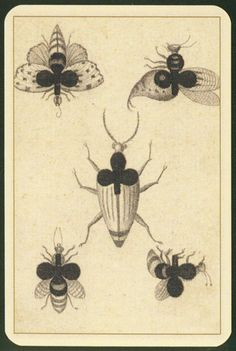 Goethe playing cards - 5 of Clubs Playing Cards Art, Vintage Playing Cards, Jack Of Spades, Wicca, Play Your Cards Right, Pokerface, Insect Art, Deck Of Cards, Card Deck