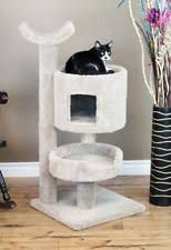 Our Premier Cat Bungalow Cat Tree is a multi-level cat condo featuring a large cat bed, a round cat cave, and a top level hammock shaped perch. Tree Shelf, Cat Cave, Cat Tunnel, Cat Condo, Data Sheets, Cat Supplies, Cool Cats, Bungalow, Your Pet