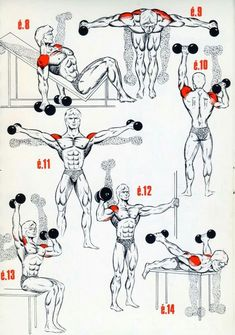 Personal Trainer Shoulder Workout is part of Bodybuilding workouts - Fitness Workouts, Gym Workout Tips, Easy Workouts, At Home Workouts, Fitness Tips, Fitness Motivation, Health Fitness, Traps Workout, Workout Body