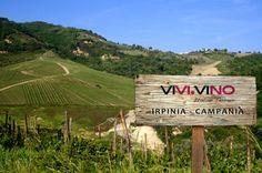 Continua la nostra ascesa attraverso i migliori #Terroir italiani...oggi siamo in Irpinia...Click, #Taste and Enjoy! www.vivivino.it