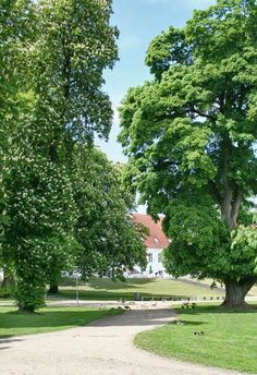 Bygholm slot, tidligere kongeborg umiddelbart vest for Horsens
