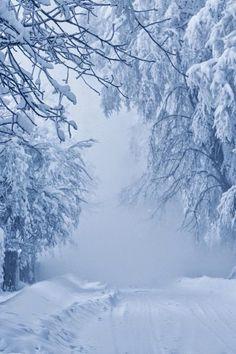 Winter Traum