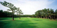 3 Lapangan Golf Dan Resortnya Terbaik Di Jepang   Lintas Golf ...