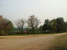 Thanathorn Fang city @chiangmai lonely trip20-03-2013