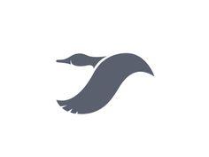 Waterfowl