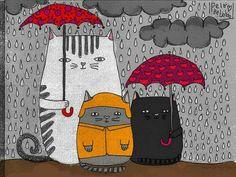 CATS - Foto