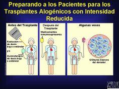 Antes de infundir las células madre (troncales) formadoras de sangre donadas, el paciente recibe quimioterapia y/o radioterapia de dosis baja o de dosis estándar. Después de ello, se le administra al (a la) paciente fármacos (medicamentos) esteroides inmunosupresores para ayudar a prevenir que el cuerpo rechace el trasplante.