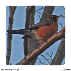 Red Robin Trivets
