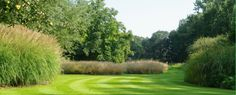 Grassentuin - Chris Ghyselen - tuinarchitect Garden Pool, Garden Landscaping, Miscanthus Gracillimus, Landscape Design, Garden Design, Dutch Gardens, Garden Architecture, Formal Gardens, Ornamental Grasses