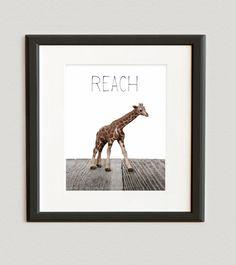 Safari Nursery Wall Art Prints, African Animals - Children Room Home Decor, Baby Giraffe Photo Print size 8x10. $20.00, via Etsy.
