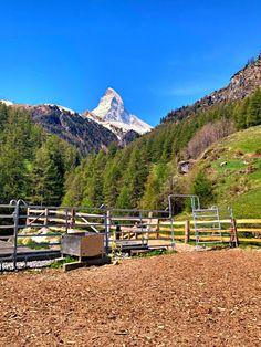 1e5ba87f01bca0 Matterhorn - Zermatt: Sommer in Zermatt: Das Matterhorn - mystisch,  majestätisch, der