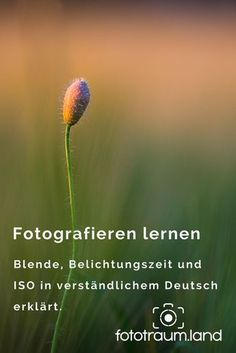 Basic series - how can I take better photos?land - Learn to take photos – I explain the basics of photography in understandable German and leave out -