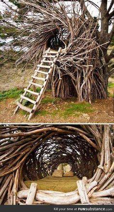 Bed nest ..amazingly awesome!