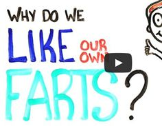 Why Do We Like Our Own Farts? – Video