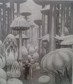 J. Augustus Knapp, illustrazione dei funghi giganti del romanzo Etidorhpa di John Uri Lloyd, 1897.