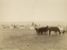 Indian Camp Blackfoot Reserve, Canada, 1880-89 Photographic Print by William Notman at AllPosters.com