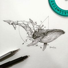 Delicated and beautiful doodles by Kerby Rosanes, aka Sketchy Stories, an illustrator based in the Philippines, who likes to combine wild animals and explosions of geometric shapes into beautiful black and white creations. Geometric Drawing, Geometric Shapes, Geometric Animal, Geometric Tattoo Whale, Animal Drawings, Art Drawings, Animal Illustrations, Drawing Animals, Whale Illustration