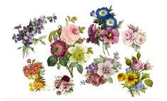 Floral temporary tattoos.