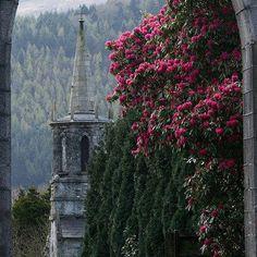 Parco Forestale di Tollymore - Bryansford - Irlanda del nord