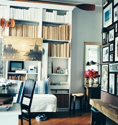 blue room bookcase