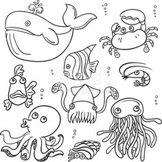 Cartoon sea animal in line art style, black and white