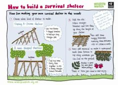How to build a survival shelter activity sheet