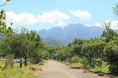 Mt Pangasugan, Baybay City, Leyte, Philippines