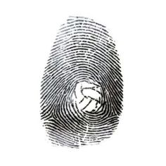Photo by Daniel Ballart Funny Volleyball Shirts Ideas of Funny Vo - Funny Volleyball Shirts - Ideas of Funny Volleyball Shirts - Photo by Daniel Ballart Funny Volleyball Shirts Ideas of Funny Volleyball Shirts Photo by Volleyball Tattoos, Volleyball Gifs, Funny Volleyball Shirts, Volleyball Players, Volleyball Socks, Volleyball Backgrounds, Waterpolo, Baby Clothes Brands, Trends